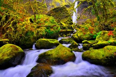 Elowah Falls | Columbia River Gorge